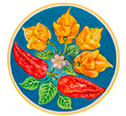 Firekiss Peppers - Site icon